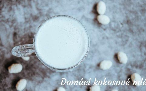 Domácí kokosové mléko